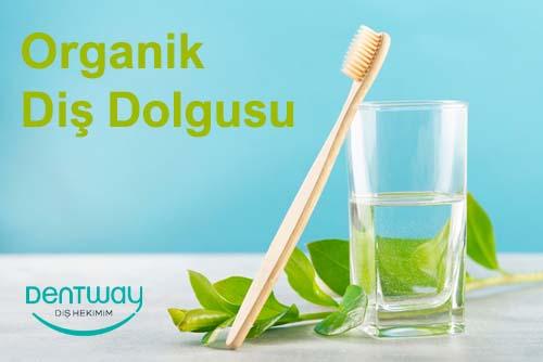 Organik Diş Dolgusu Nedir?
